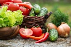 Mand en houten plaat met verse groenten (tomaten, cucumbe Royalty-vrije Stock Foto