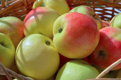 Mand met appelen stock afbeelding