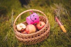 Mand met appelen Stock Foto