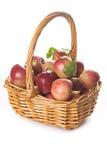 Mand met appelen op een witte achtergrond worden geïsoleerd die Royalty-vrije Stock Foto