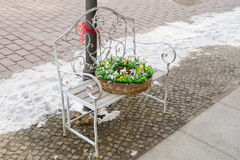 Mand met bloemen op de bank Stock Afbeeldingen