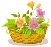Mand met bloemenalstroemeria Royalty-vrije Stock Afbeelding