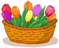 Mand met bloementulpen Stock Foto's
