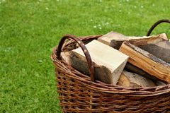 Mand met brandhout Stock Afbeelding
