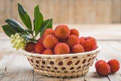 Mand met de rijpe vruchten van arbutusunedo Royalty-vrije Stock Fotografie
