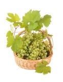 Mand met druiven Stock Afbeelding