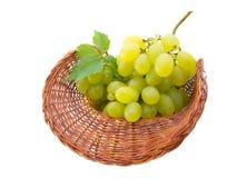 Mand met druiven die op wit worden geïsoleerdt Stock Afbeelding