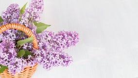 Mand met een boeket van lilac bloemen op een witte houten lijst, banner met plaats voor tekst stock foto