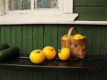 Mand met kleine pompoenen en op de portiek van een dorpshuis royalty-vrije stock foto's