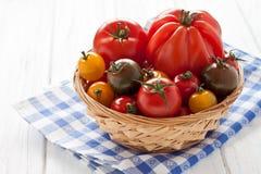 Mand met kleurrijke tomaten Stock Afbeelding