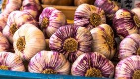 Mand met knoflook op natuurvoedingmarkt Royalty-vrije Stock Fotografie