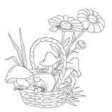 Mand met paddestoelen en bessen Paddestoelen en kamilles Bosoogst Vectorillustratie, kleurend boek Royalty-vrije Stock Foto