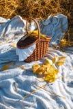 Mand met rode appelenkosten op het hooi Royalty-vrije Stock Foto