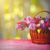 Mand met sering en tulips_3 Stock Afbeelding