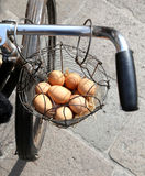 mand met vele verse eierenkip Stock Afbeelding