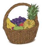 Mand met verschillende vruchten kleur Stock Fotografie