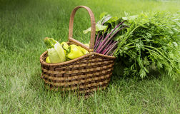 Mand met Verse groenten 2 Royalty-vrije Stock Afbeeldingen