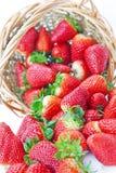 Mand van aardbeien. Stock Afbeeldingen