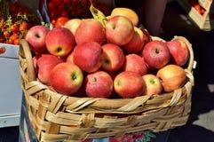 Mand van appelen Stock Fotografie