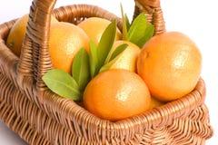 Mand van clementines Stock Foto's