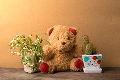 Mand van droge bloemen en een teddybeer met potten van cactus op houten lijst Stock Foto's
