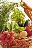 Mand van groenten Stock Foto
