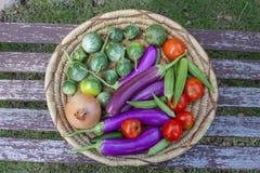 Mand van kleurrijke groenten met inbegrip van Thaise en Japanse aubergine een uitomaten en okra - hoogste mening stock afbeelding