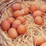 Mand van organische eieren in een landelijke landbouwersmarkt stock foto