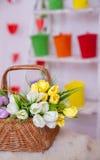 Mand van tulpen in de lentedecor Royalty-vrije Stock Afbeelding