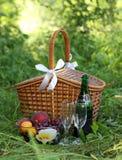Mand voor picknick Stock Afbeelding