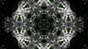 Mandala abstracta de la flor blanca Fotos de archivo