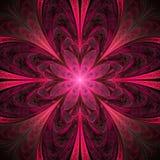 Mandala abstrata da flor no fundo preto Imagens de Stock