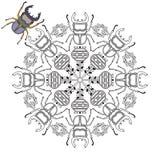 The mandala with a beautiful beetle. Stock Photos