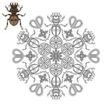 Mandala with a beetle, hearts and geometric shapes. Stock Image