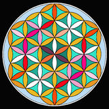 Mandala. A colorful floral mandala with black background Royalty Free Stock Image