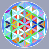 Mandala. A colorful floral mandala with gray background Royalty Free Stock Photo