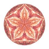 Mandala colorida de la acuarela Modelo redondo del vintage oriental Fondo abstracto drenado mano Adorno místico del otomano Imagen de archivo