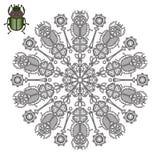 Mandala com o escaravelho de um besouro Fotos de Stock