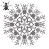 Mandala con los escarabajos y las flores Imagenes de archivo
