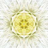Mandala Concentric Flower Center Kaleidoscope blanca Foto de archivo libre de regalías
