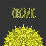 Mandala de fleur Éléments décoratifs de cru Modèle oriental, illustration de vecteur Label tiré par la main organique Sain Photos libres de droits