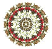 Mandala de framboise Photos libres de droits