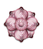 Mandala de la cebolla imágenes de archivo libres de regalías