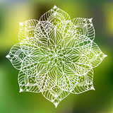 Mandala de la flor Fotos de archivo libres de regalías