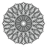 Mandala de la flor Elementos decorativos de la vendimia libre illustration