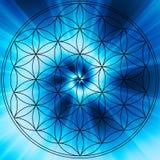 Mandala de la flor de la vida foto de archivo