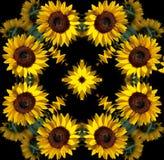 Mandala del girasol Imagen de archivo libre de regalías