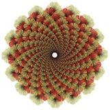 Mandala del monocromo del color del vector Foto de archivo libre de regalías