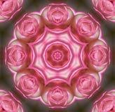 Mandala della Rosa Fotografie Stock Libere da Diritti