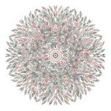 Mandala. Ethnicity floral round ornament. Circular ornament. Stock Images